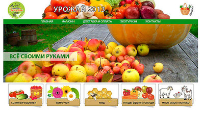 Site design penevo.ru